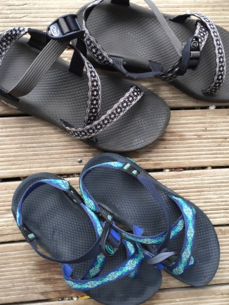 Chaco friends
